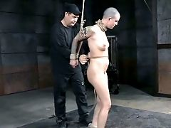 Perverted Tying Master Bashes His Gimp With A Signal Whip