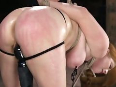 Whorey Crimson Haired Honey Penny Pax Gets Her Poon And Ass Hole Spread