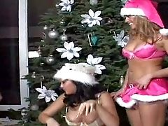 Youthful Smoking Hot Stunners Nikki And Dee With Rigid Eatable